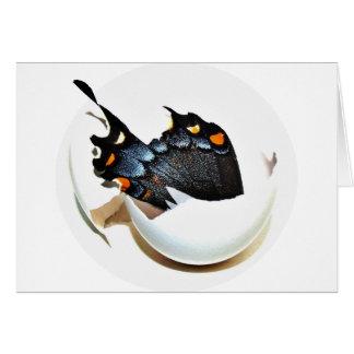 AG Butterfly Card