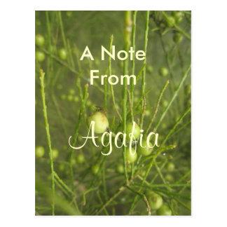 Agafia girls name gift postcard