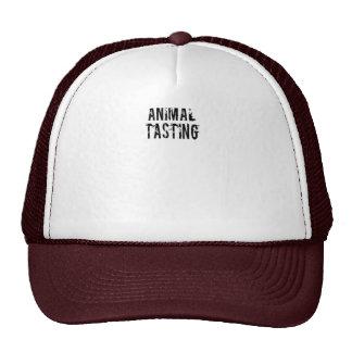 Against Animal Tasting Mesh Hat