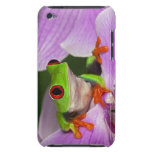Agalychnis callidryas. iPod touch Case-Mate protectores