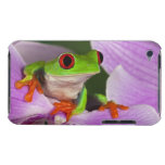 Agalychnis callidryas. iPod touch cases