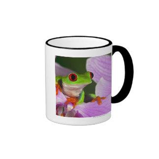 Agalychnis callidryas mug