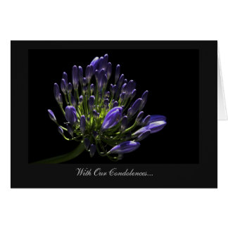 Agapanthus, African Lily - With Our Condolences Card
