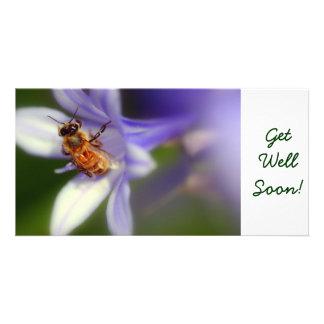 agapanthus africanus, GetWellSoon! Photo Card