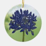 Agapanthus azul de la lila en el jardín adorno navideño redondo de cerámica