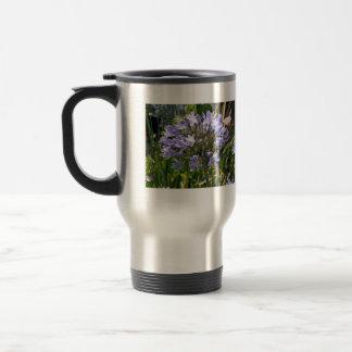 Agapanthus azul que florece en un día soleado taza de café
