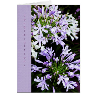 Agapanthus Bloom Greeting Card