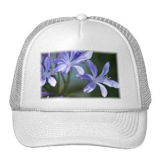 Agapanthus blooms cap trucker hat