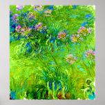 Agapanthus de Claude Monet Poster
