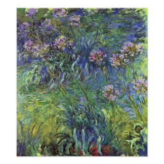 Agapanthus Flowers by Claude Monet Poster