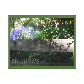 Agapanthus in sunshine and shadows canvas print