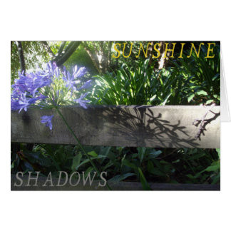 Agapanthus in sunshine and shadows card