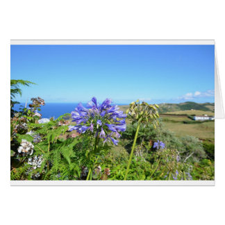 Agapanthus in the Azores Greeting Card