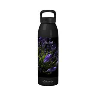 Agapanthus púrpura floreciente Sunlit, lirio afric Botella De Agua