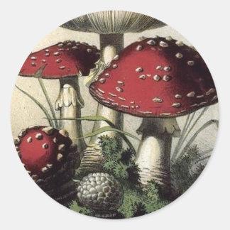 Agaricus Muscarius Mushroom Classic Round Sticker
