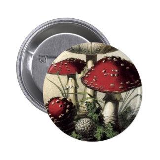 Agaricus Muscarius Mushroom Pinback Button