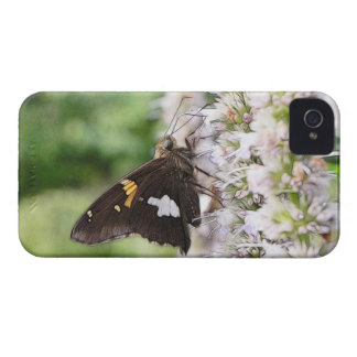 Agastache And Skipper Butterfly iPhone 4 Covers