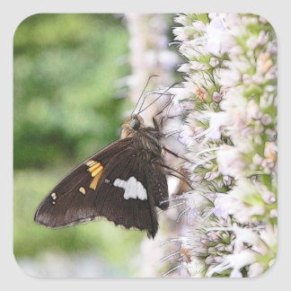 Agastache And Skipper Butterfly Square Sticker