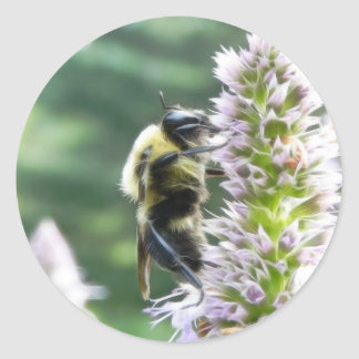Agastache Flowers With Bumblebee Classic Round Sticker
