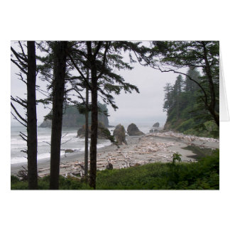 AGATE BEACH by SHARON SHARPE Stationery Note Card