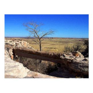 Agate Bridge, Arizone Postcard