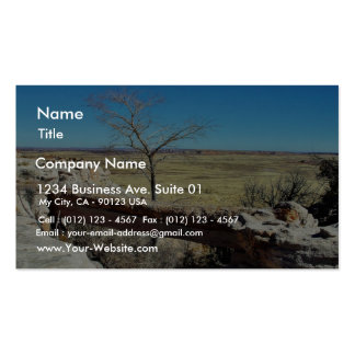 Agate Bridge At The Petried Forest Natural Park Business Card Template