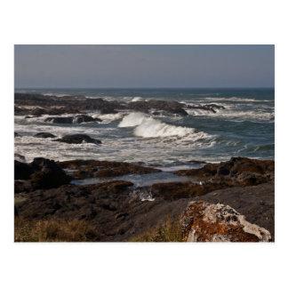 Agate Cove, Oregon Postcard