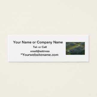 agate fossil beds national park green mini business card