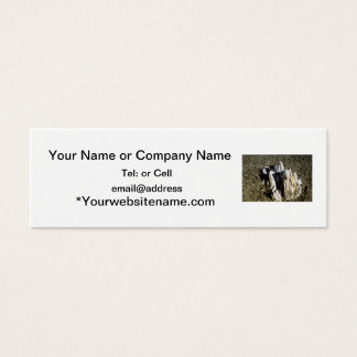 Agate fossil beds park items fossil tree mini business card