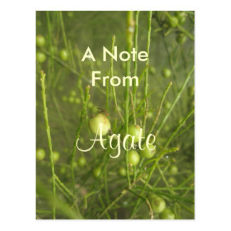 Agate girls name product postcard