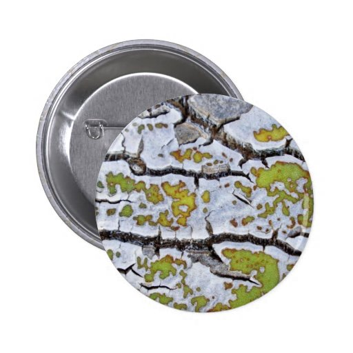 Agave 1 pinback buttons
