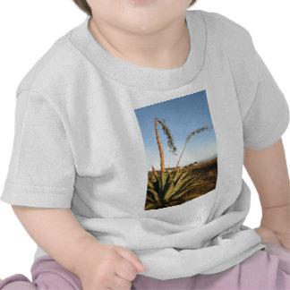 Agave americana century plant Chile coast T-shirt