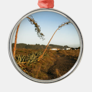 Agave americana century plants Chile coast Metal Ornament