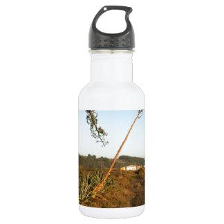 Agave americana century plants Chile coast 18oz Water Bottle