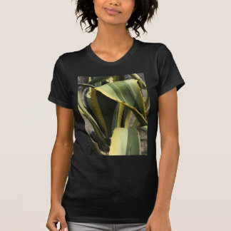 Agave Americana - Maguey T-shirts