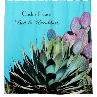 Agave and Prickly Pear Cactus on Turquoise Wall