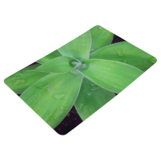 Agave and Raindrops Floor Mat
