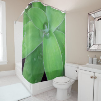 Agave and Raindrops Shower Curtain