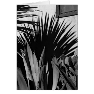 Agave and Shadow Card