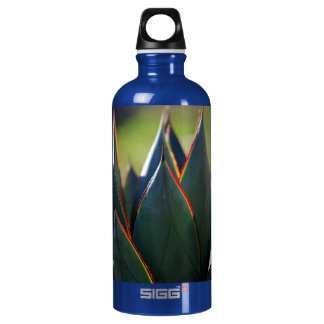 Agave Blue Glow Water Bottle