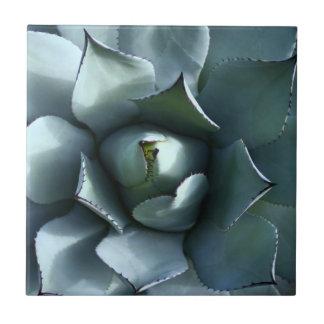 agave blue tiles