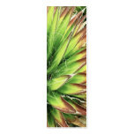 Agave Double-Sided Mini Business Cards (Pack Of 20)