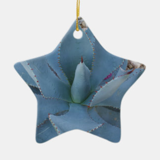 Agave Ceramic Ornament