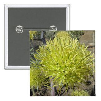 Agave Giant Flower Cluster Pinback Button