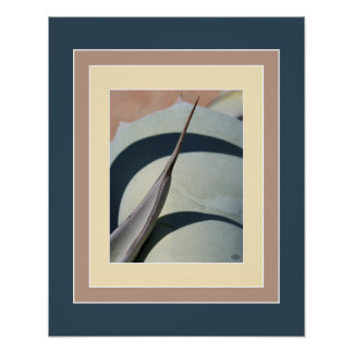 Agave Needle Sonoran Desert Plants Print