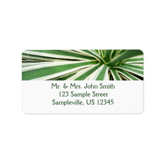 Agave Plant Green and White Stripe Address Label