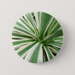 Agave Plant Green and White Stripe Button