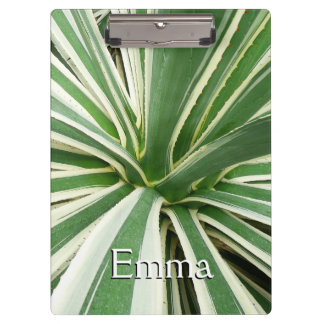 Agave Plant Green and White Stripe Clipboards