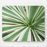 Agave Plant Green and White Stripe Mouse Pad