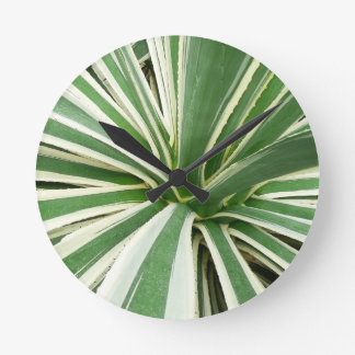 Agave Plant Green and White Stripe Round Wall Clocks